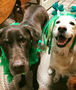 Maggie & Q in their St. Patrick's day green