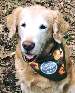 Trooper wearing camp neckerchief
